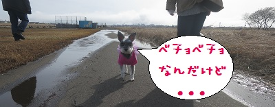 IMG_5326[1]