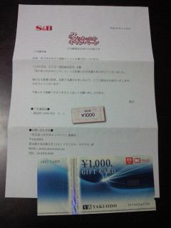 NEC_0182_20150208165318477.jpg