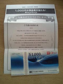 NEC_0297_201505301621540c8.jpg