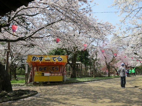 桜&カステラの屋台