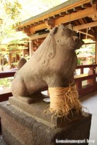 久伊豆神社(越谷市越谷)35