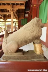 久伊豆神社(越谷市越谷)36