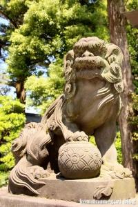 久伊豆神社(越谷市越谷)44