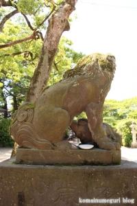 久伊豆神社(越谷市越谷)41