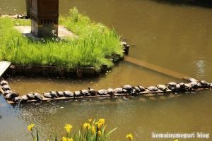 久伊豆神社(越谷市越谷)64
