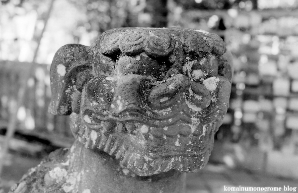 江島神社(藤沢市江の島)17
