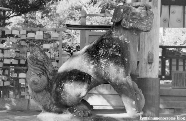江島神社(藤沢市江の島)16