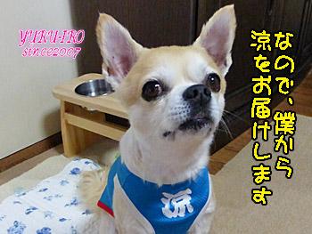 yuruiro20150530_k002