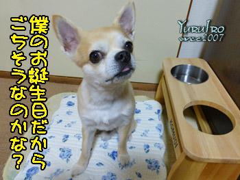 yuruiro20150623_k00401