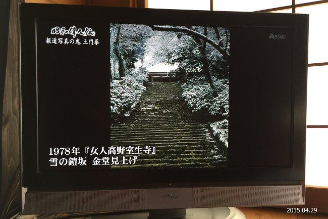IMG_6948-M.jpg