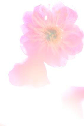 150212_036.jpg