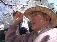 平成27年桜/春