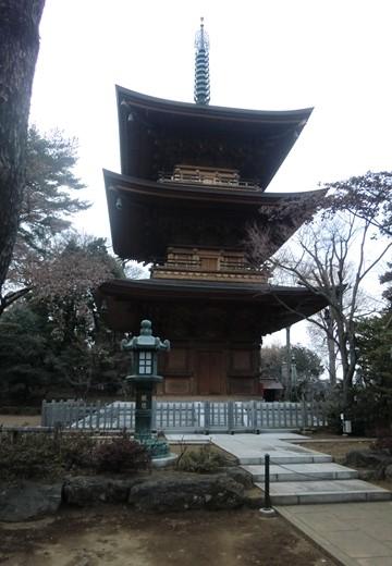 豪徳寺・松蔭神社 (48)_R