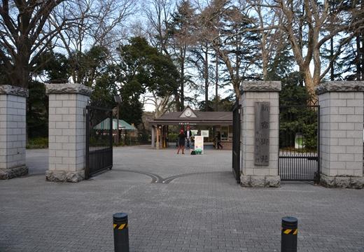 国立 高田邸 (203)_R
