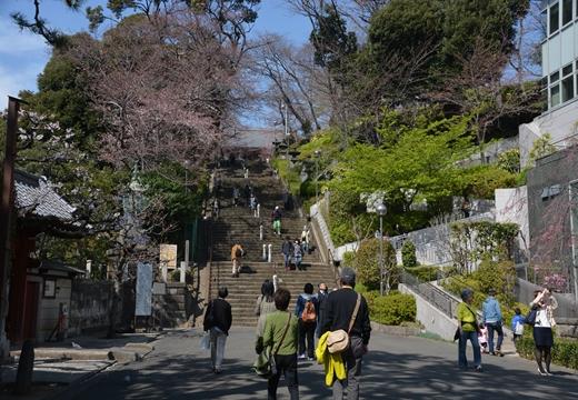 桜の街 (47)_R