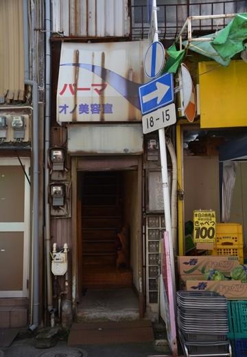 横浜根岸 (50)_R