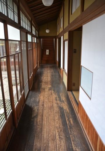 横浜根岸 (218)_R