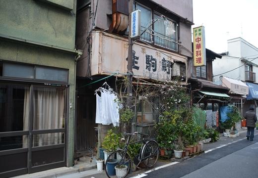 桜・池袋 (209)_R