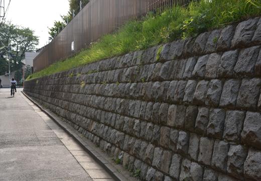 駒沢1000 (293)_R