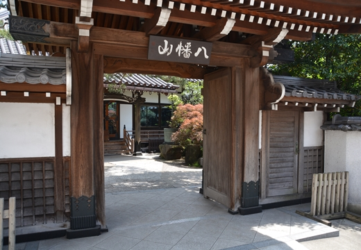 駒沢1000 (34)_R