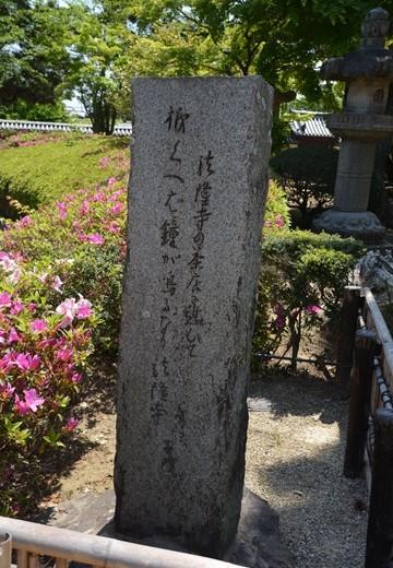 奈良200 (120)_R