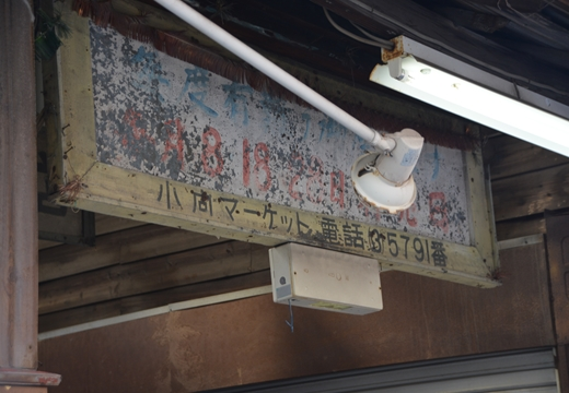川崎201505 (171)_R