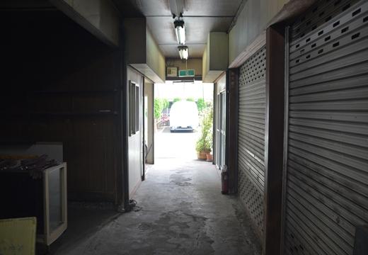 川崎201505 (226)_R