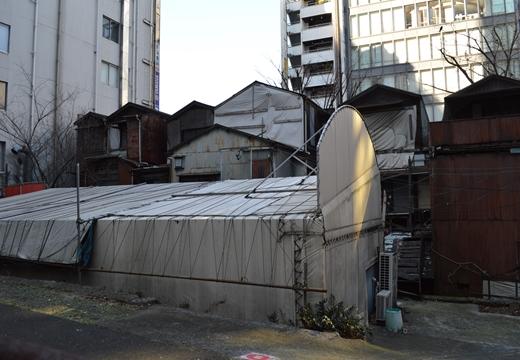 渋谷 (94)_R