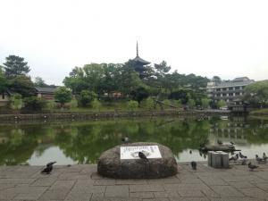 sarusawa0523_convert_20150523112600.jpg