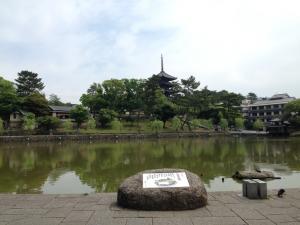 sarusawa0529_convert_20150529113401.jpg