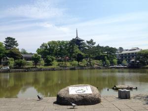 sarusawa0530_convert_20150530113153.jpg