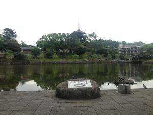 sarusawa0608_convert_20150608125924.jpg