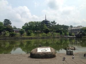 sarusawa0615_convert_20150615120947.jpg