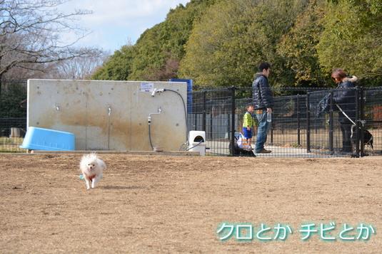 535px20141225_MiTo-01.jpg