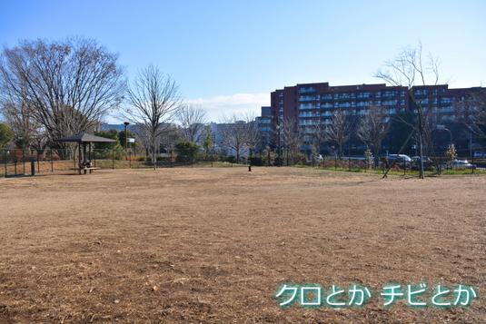 535px20141228_FUGA-02.jpg