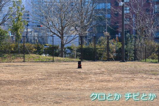 535px20141228_FUGA-03.jpg
