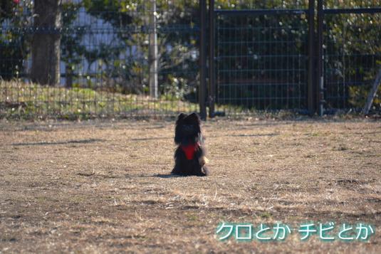 535px20141228_FUGA-04.jpg