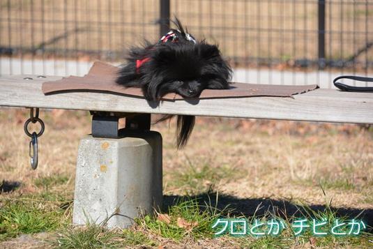 535px20150110_FUGA-001.jpg