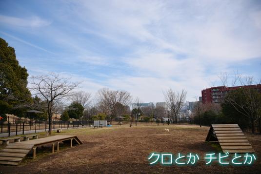 535px2015018_FUGA-01.jpg