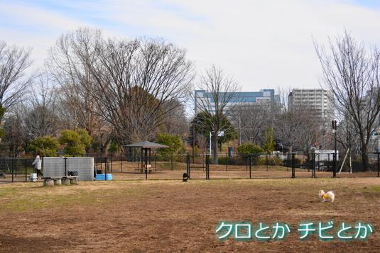 535px2015018_FUGA-02.jpg