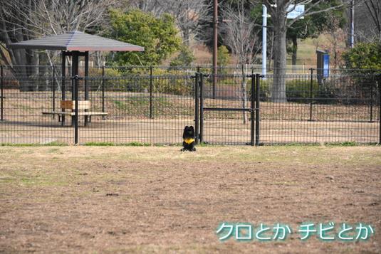 535px2015018_FUGA-03.jpg