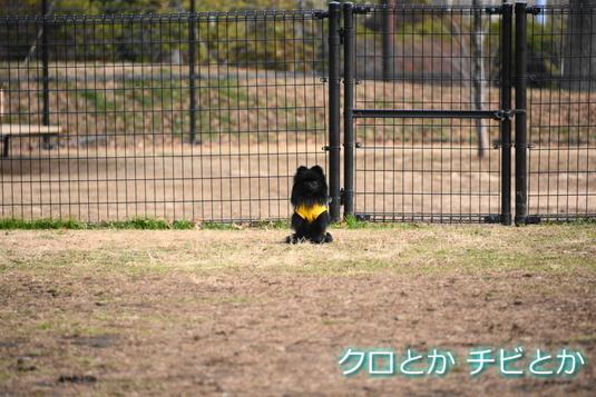 535px2015018_FUGA-04.jpg