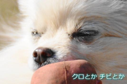 535px2015020_MiTo-06.jpg