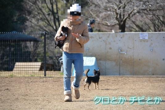 535px20150213_CHIBIMAMA-01B.jpg