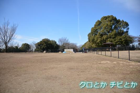 535px20150217_MiTo-02.jpg