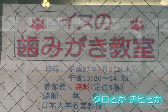 540px20150603_etc-02.jpg