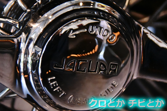 540px20150614_JAGUAR-01.jpg