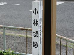 DSCN2110Blog.jpg