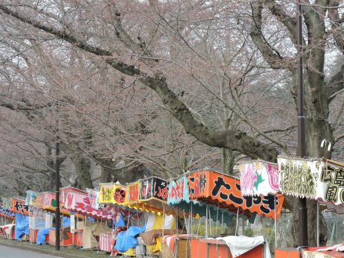 DSCN2156Blog.jpg