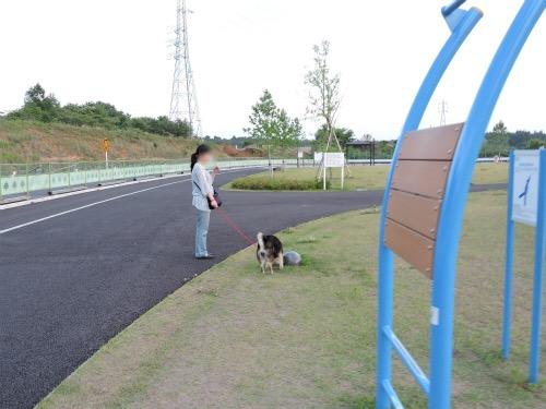 DSCN4282Blog.jpg